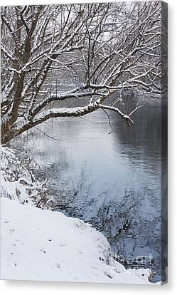 French Broad River  Canvas Print
