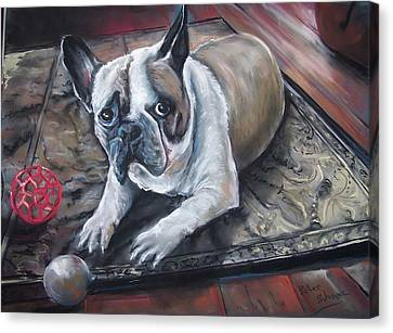 french Bull dog Canvas Print by Peter Suhocke