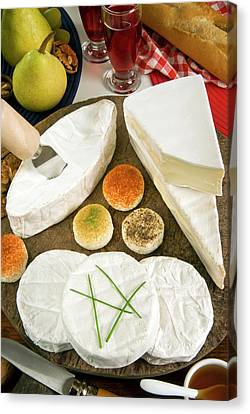 French Cheeses, France Canvas Print by Nico Tondini