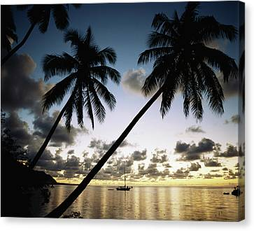 French Polynesia, View Of Moorea Bay Canvas Print by Douglas Peebles