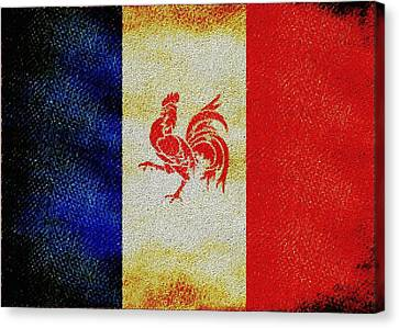 French Rooster Canvas Print by Jared Johnson