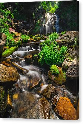 Fresh And Free Flowing Canvas Print by Gene Garnace