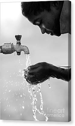 Fresh Clean Water Canvas Print by Tim Gainey