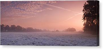 Fresh Cool Morning  Canvas Print