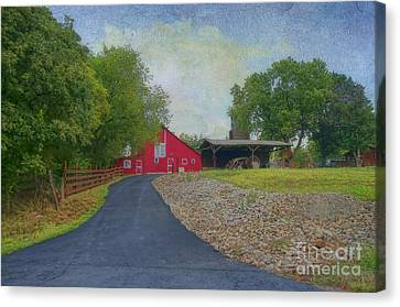 Fresh Country Charm Canvas Print by Liane Wright