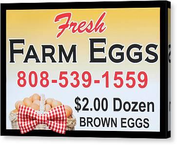 Canvas Print featuring the photograph Fresh Farm Eggs by Sylvia Thornton