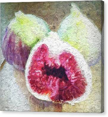 Fresh Figs Canvas Print by Linda Woods