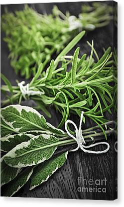 Fresh Herbs In Bunches Canvas Print by Elena Elisseeva