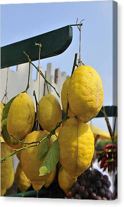Fresh Lemons At The Market Canvas Print by Matthias Hauser