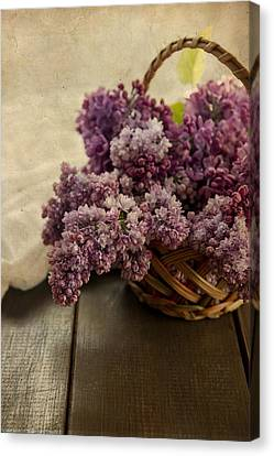 Fresh Lilacs In Brown Basket Canvas Print by Jaroslaw Blaminsky