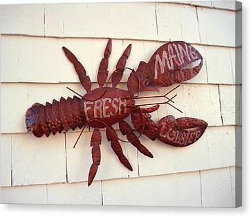 Fresh Maine Lobster Sign Boothbay Harbor Maine Canvas Print by Patricia E Sundik