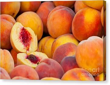 Fresh Organic Peaches  Canvas Print by Leyla Ismet