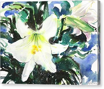 Fresh Pick No.386 Canvas Print