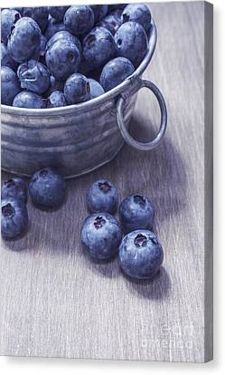 Fresh Picked Blueberries With Vintage Feel Canvas Print