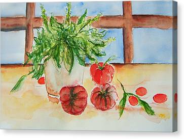 Fresh Picked Tomatoes And Basil Canvas Print by Elaine Duras