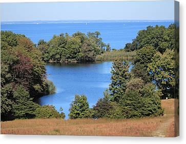Fresh Pond At Caumsett Canvas Print