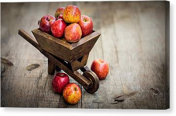 Fresh Red Apples Canvas Print by Aged Pixel