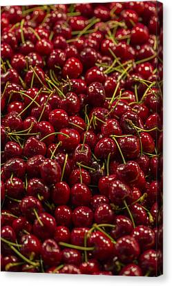 Curve Ball Canvas Print - Fresh Red Cherries by Scott Campbell
