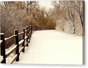 Fresh Snow Canvas Print by Rosanne Jordan
