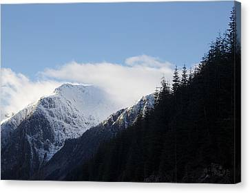 Fresh Snow Canvas Print