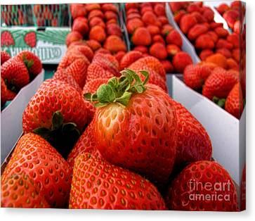 Fresh Strawberries Canvas Print by Peggy Hughes