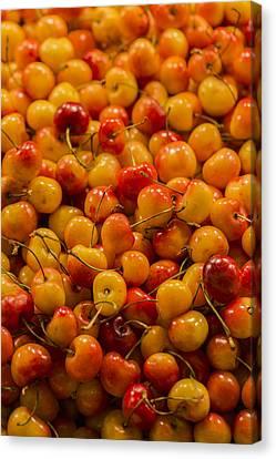Curve Ball Canvas Print - Fresh Yellow Cherries by Scott Campbell