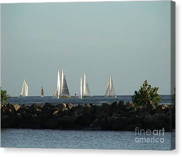 Friday Night Races Canvas Print