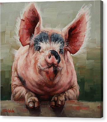 Friendly Pig Canvas Print by Margaret Stockdale