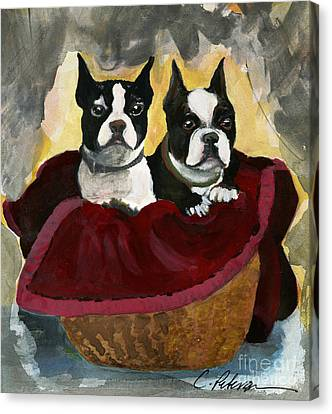Friends.  A Pair Of Boston Terrier Dogs Snuggle In A Warm Basket. Canvas Print by Cathy Peterson