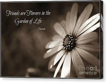 Friends Are Flowers Canvas Print by Clare Bevan