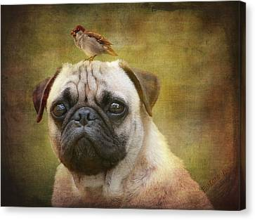Friends Like Pug And Bird Canvas Print by Barbara Orenya