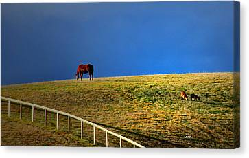 Friends  Canvas Print by Linda Romine
