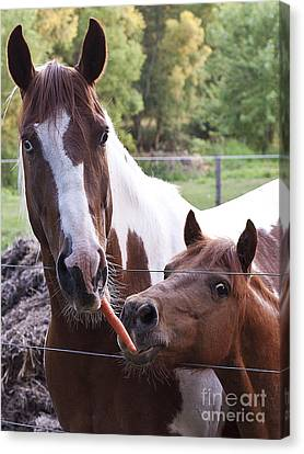 Friends Share Canvas Print