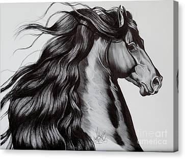 Friesian Head Shot Canvas Print by Cheryl Poland