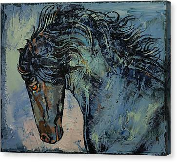 Friesian Stallion Canvas Print by Michael Creese