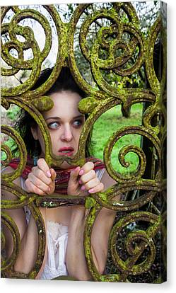 Frightened  Canvas Print by Semmick Photo