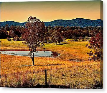 From A Distance Canvas Print by Wallaroo Images