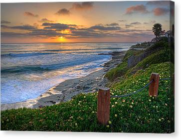 La Jolla Art Canvas Print - From Above II by Peter Tellone