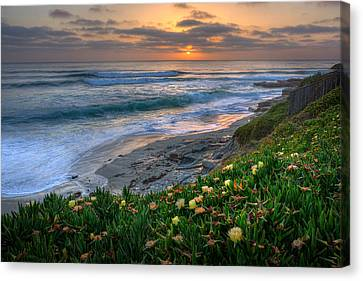 La Jolla Art Canvas Print - From Above by Peter Tellone