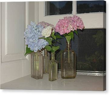 Canvas Print featuring the photograph From My Window Sill  by Delona Seserman