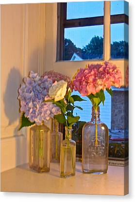 Canvas Print featuring the photograph From My Window Sill In Colors by Delona Seserman