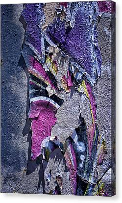 From Rags To Riches Canvas Print by Nikolyn McDonald