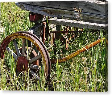 From Rust To Grass Canvas Print