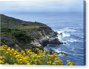 From The Cliffs Above Canvas Print by Anthony Citro