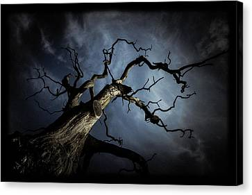 From The Darkness It Came Canvas Print by Chris Fletcher