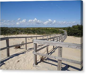 From The Dunes To The Marsh Canvas Print by David Nichols