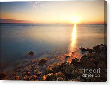 From The Rocks Sunset  Canvas Print by Eyzen M Kim