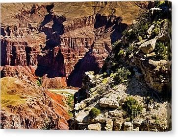 From Yaki Point 1 Grand Canyon Canvas Print by Bob and Nadine Johnston