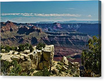 Canvas Print featuring the photograph From Yaki Point 2 Grand Canyon by Bob and Nadine Johnston