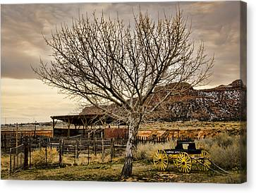 Frontier Canvas Print by Heather Applegate